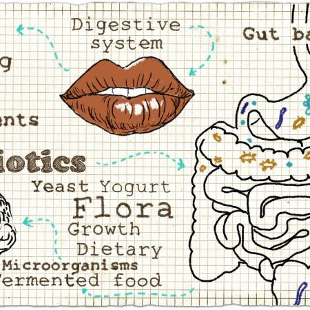 Gastro-Intestinal